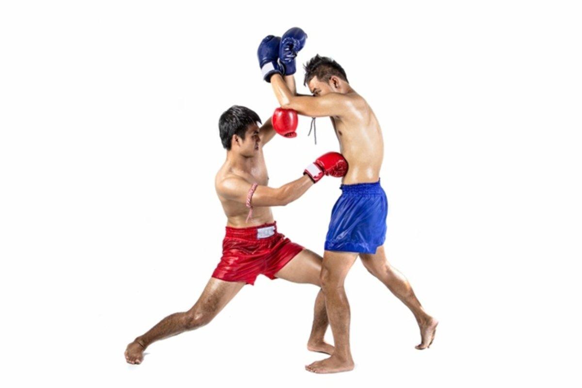muay thai pierde burta gras)